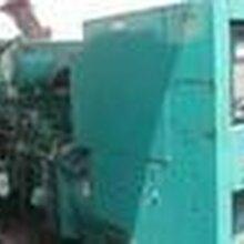 上海浦东二手康明斯发电机组回收图片