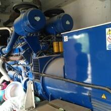 太仓哪有发电机组回收公司-上海周边二手发电机组回收图片