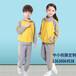 供应中学生运动校服定制STD57001全棉校服定做(来版来图定制)斯踏迪服饰有限公司
