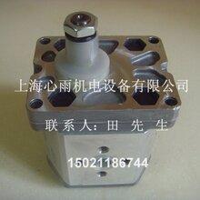 ATOS阿托斯齿轮泵PFGXF-210/D