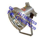 DGC35/24B(A)矿用隔爆型投光照明灯-价廉物美图片