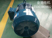 广东广州YE2160L-2系列三相异步电动机高效节能电动机市场热销中