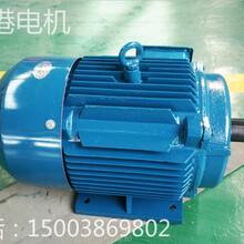 河南金港Y系列三相异步电动机厂家直销