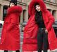 內蒙古女士棉服批發新款棉服批發2020棉服批發爆款棉服批發