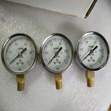 日本原装DAIICHIKEIKI电压表图片