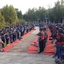 浙江杭州真人CS装备电子飞碟装备厂家批发图片