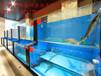 从化专业做海鲜池做海鲜池海鲜池制作专业设计,制作各类海鲜池/大型海鲜缸/等