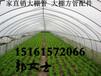 浙江温州永嘉县大棚钢管4分6分10米免费折弯4分-8寸厚0.6-5.5大棚管