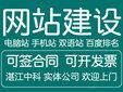 湛江网站优化公司SE0优化专家图片