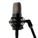 WarmAudioWA14电容录音话筒