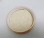 食品生產許可認證200目啤酒酵母粉脫苦無臭資質齊全廠家批發