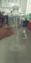 河南1.8升昆侖之星玻璃水瓶子廠家異形玻璃水瓶子價格圖片