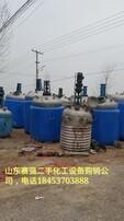 不锈钢反应釜,搪瓷反应釜,电加热反应釜,高压反应釜图片