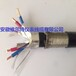 阻燃钢丝铠装计算机屏蔽电缆ZR-DJYP3V32P3-2X2X1.5