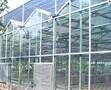 玻璃温室工程图片