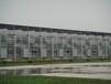 玻璃温室承建