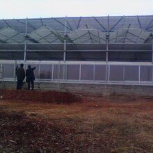 阳光板温室工程承建