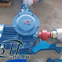供应RCB不锈钢沥青保温泵,不锈钢沥青泵,不锈钢保温齿轮泵图片