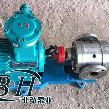 不锈钢保温齿轮泵,保温齿轮泵图片