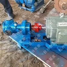 直销NCB转子泵胶体泵高粘度泵大流量不锈钢转子泵图片