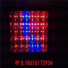 鸿悦牌LED植物生长灯100w200w大功率植物补光灯生产厂家