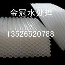 四川聚丙烯蜂窝斜管填料厂家咨询价格