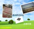 浙江优质全陶瓷透水砖价格便宜供应生态海绵砖城市陶瓷颗粒透水路面砖