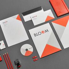 品牌设计,Logo设计,VI设计,包装画册设计