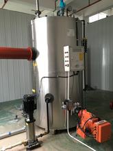 0.5吨燃油(气)蒸汽锅炉免手续手续即可安装使用无须持证人员即可操作图片
