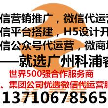 江门微信公众号文案编辑,微信活动营销,新媒体推广