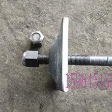 生产厂家定做左旋锚杆螺纹钢式树脂锚杆