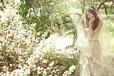 昆明冬天拍婚纱照有哪些好地方拍外景