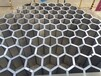 温州大型蜂巢迷宫现货钢铁蜂巢迷宫浪漫雨屋租赁