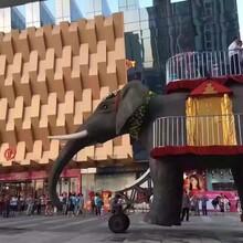 广州水上冲浪雨屋现货机械大象租赁