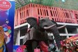 本溪機械大象,仿真動態機械大象出租