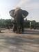 大型机械大象仿真机械大象行走机械大象出租