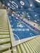 上海閔行區親子水育游泳池廠家供貨生產大型室內恒溫設備