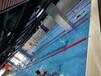 杭州室內恒溫游泳池鋼結構組裝游泳池-大型室內游泳池