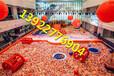 揭阳室内儿童乐园游乐设备室内儿童乐园多少钱百万球池利润