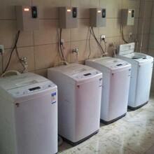 海尔XQB50-M1269商用投币式洗衣机价格实惠