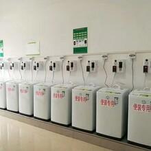 海尔XQB50-M1269手机支付洗衣机图片